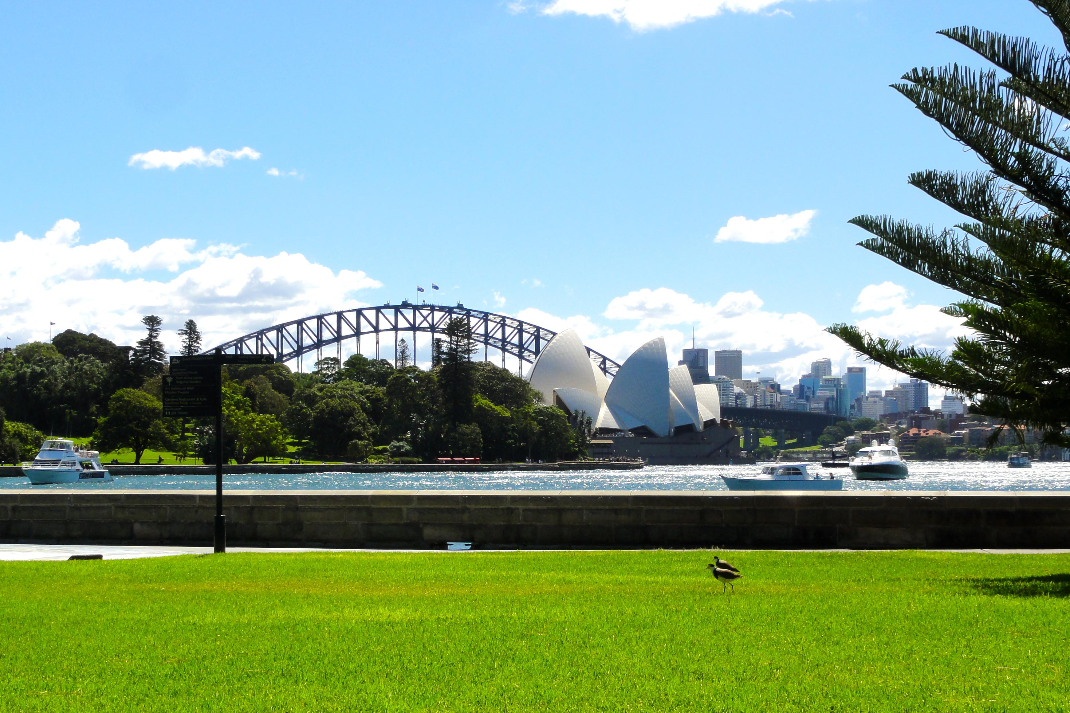 Sydney On A Shoestring Kan Walk Will Travel