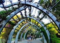 The arbour at Southbank Parklands Brisbane