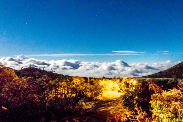 Stargazing at Mauna Kea