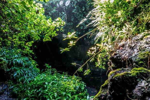 Caves at Waianapanapa