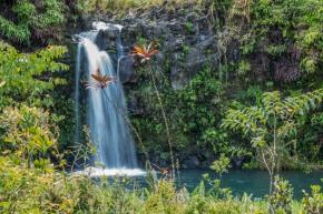 Waterfall at Puaa Kaa State Wayside Park