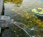 Chi Lin Nunnery - Lotus Pond