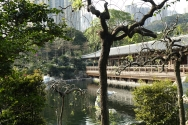 Nan Lian Garden - Cedarwood Pavilion