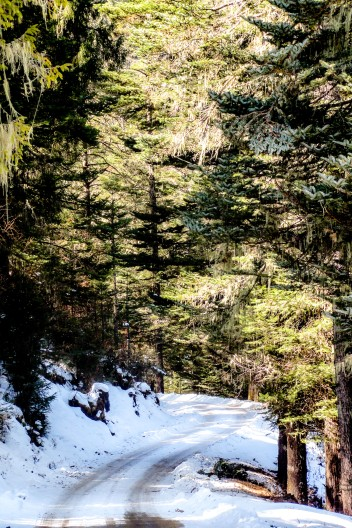 Snowy mountain roads
